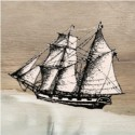 The Whaleship Essex thumbnail, feature image 2