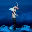 'Swan Lake' returns to the Joffrey in 2018-29 season (Cheryl Mann) featured image
